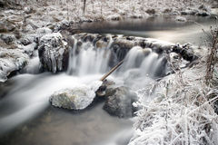 Frozen stream in forest Royalty Free Stock Photography