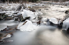 Frozen stream in forest Stock Images