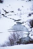 Frozen stream. In the snow Royalty Free Stock Photos