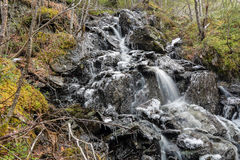Frozen stream in the mountains Stock Image