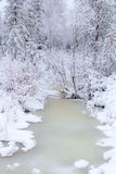 Frozen stream. Royalty Free Stock Photography