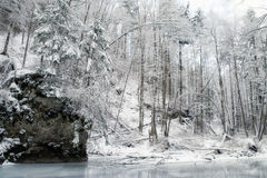 Frozen stream in winter forest Stock Image