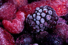Frozen summer fruits macro Stock Image
