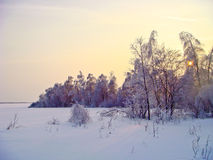 Frozen sun. Winter, cold day, but the sun is already ready to go to celebrate New year Stock Image