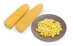 Frozen sweet corn kernels on dish against of fresh corn Royalty Free Stock Image
