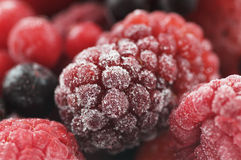 Frozen sweet fruit Royalty Free Stock Image
