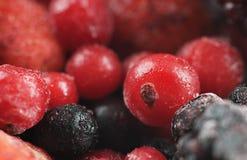 Frozen sweet fruit Royalty Free Stock Image