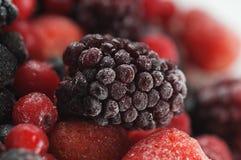 Frozen sweet fruit Royalty Free Stock Photo