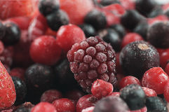 Frozen sweet fruit Royalty Free Stock Photos
