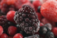 Frozen sweet fruit Stock Image