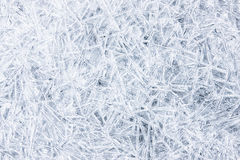 Frozen Texture Royalty Free Stock Photography