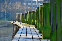 Frozen timber pier in winter Royalty Free Stock Photography