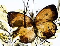 Frozen in time. Grungy background of butterfly and dried flowers Royalty Free Stock Image