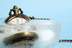 Frozen In Time Stock Photos