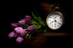 Frozen time with purple tulips. Still life with an old silver alarm clock and a bouquet of purple tulips arranged on a wooden shelf Stock Image