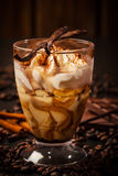 Frozen tiramisu dessert Royalty Free Stock Images