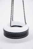 Frozen Tire Swing Stock Image