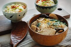 Frozen Tofu Soup & Tofu Mentaiko Donburi. Frozen tofu braised with fish flesh and mushrooms, and topped with beaten eggs and greens Stock Photography