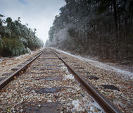 Frozen in the tracks Royalty Free Stock Images