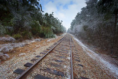 Frozen tracks Royalty Free Stock Photos