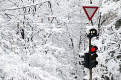 Frozen traffic light. At winter showing red light Stock Photo