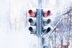 Frozen traffic lights Royalty Free Stock Photography
