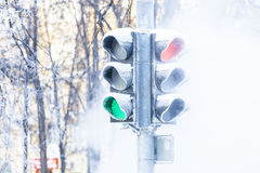 Frozen traffic lights Royalty Free Stock Photo