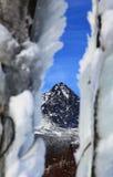 Frozen tree. In Tatranska Lomnica - High Tatras mountains, Slovakia stock photo