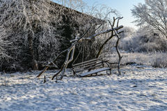 Frozen trees and old bench swing Stock Image