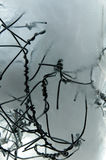 Frozen Twisted Wire Stock Photography
