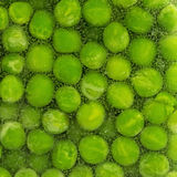 Frozen Vegetables Royalty Free Stock Photography