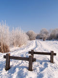 Footpath in winter. Frozen vegetation and footpath, Jura , france, Malbuisson Stock Images