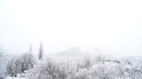 Frozen view Royalty Free Stock Photography
