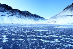 Frozen Volcanic beach in the East Fjords Royalty Free Stock Photography