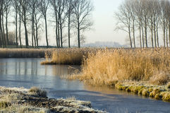 Frozen water. Dutch scenery royalty free stock image