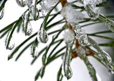 Frozen water drops Stock Images