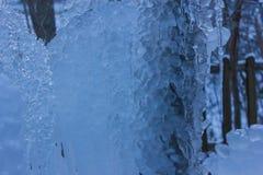 Frozen water drops in the garden. Frozen water drops in winter, in the garden Stock Photo