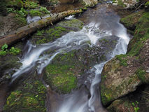 Frozen water forest stream with a log and mossed stones Stock Photo