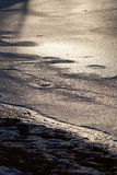 Frozen water on the lake shore closeup Royalty Free Stock Images