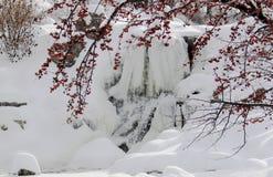 Free Frozen Waterfall Stock Photos - 11897883