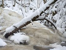 Frozen waterfall, icy twigs and icy boulders in frozen foam of rapid stream. Winter creek. Extreme freeze. Royalty Free Stock Images