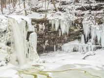 Frozen waterfall in Ricketts Glen Park. Frozen waterfall in Ricketts Glen State Park, Pennsylvania Royalty Free Stock Photo
