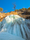 Frozen waterfall with tree Stock Image