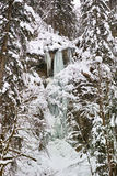 Frozen waterfall in woody mountains Stock Image