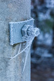 Frozen web Stock Image