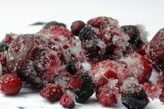 Frozen wild berries Royalty Free Stock Images