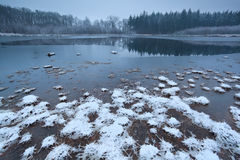 Frozen wild lake in forest Stock Photos