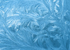 Frozen window. An ornament of frost on a window stock photography