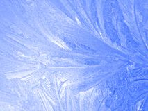 Frozen window. An ornament of frost on a window Stock Photos