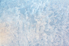 Frozen window glass Stock Image